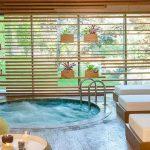 Tasigo Hotels Eskisehir Bademlik - Termal Jakuzi