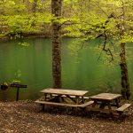 Huzurun adresi Abant: Piknik