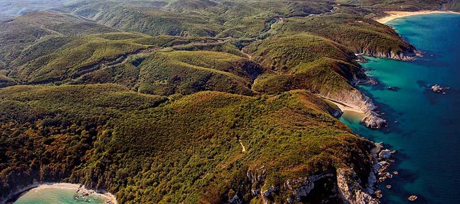 İğneada Gezi Rehberi - İğneada Ormanları