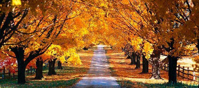 Sonbahar Tatili - Kıbrıs