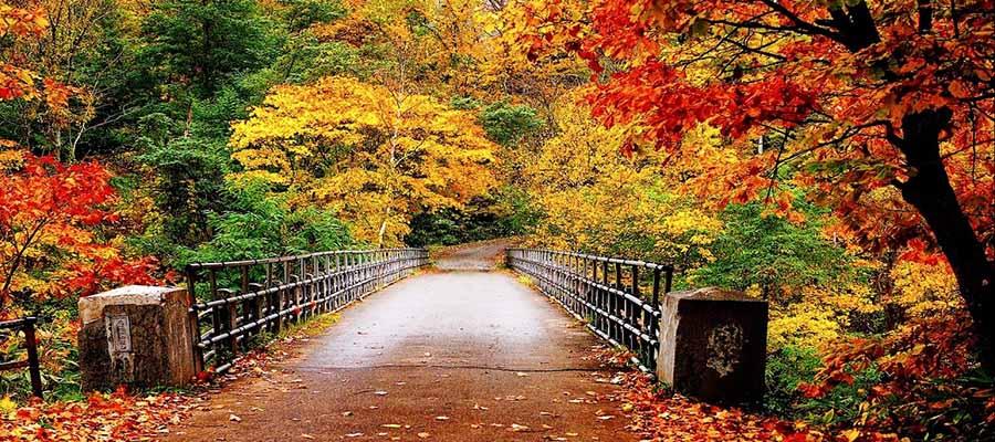 Sonbahar Tatili - Yürüyüş Yolu
