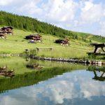 Türkiye'nin En Güzel Dağ Evleri - Kapak