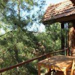 Türkiye'nin En Güzel Dağ Evleri - Kayserkaya Dağ Evleri - Manzara