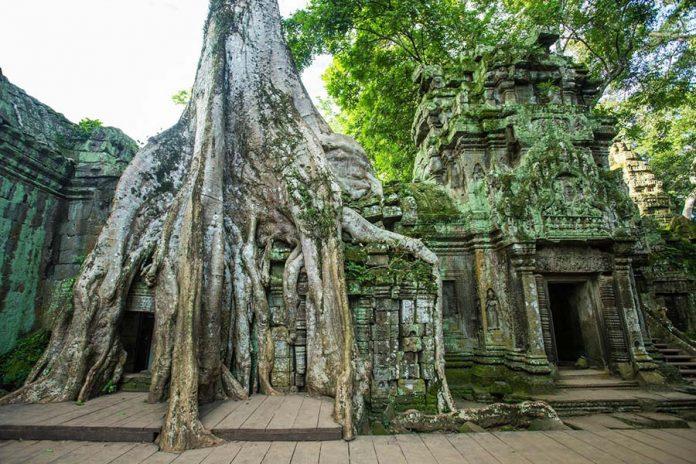 Mutlaka Görmeniz Gereken Yerler - Ta Prohm tapınağı