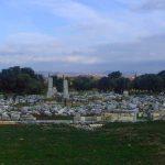 Seferihisar - Teos Antik Kent - Genel