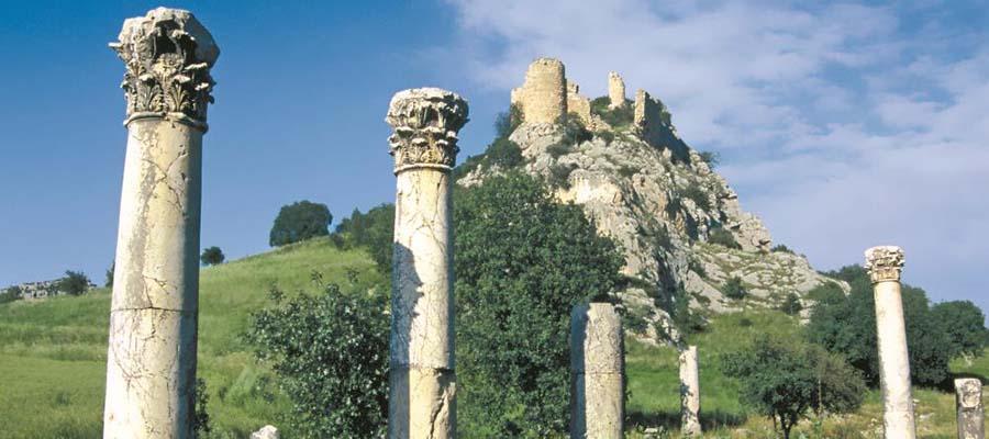 Anavarza Antik Kenti - Sütunlar