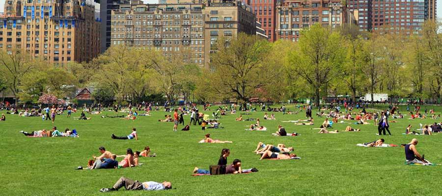Dünyanın En Güzel Parkları - Central Park - Genel