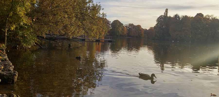Dünyanın En Güzel Parkları - İngiliz Bahçesi - Genel