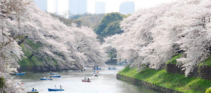 Dünyanın En Güzel Parkları - Ueno Park