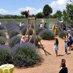 Kuyucak Köyü - Lavantalar Oyun Alanı