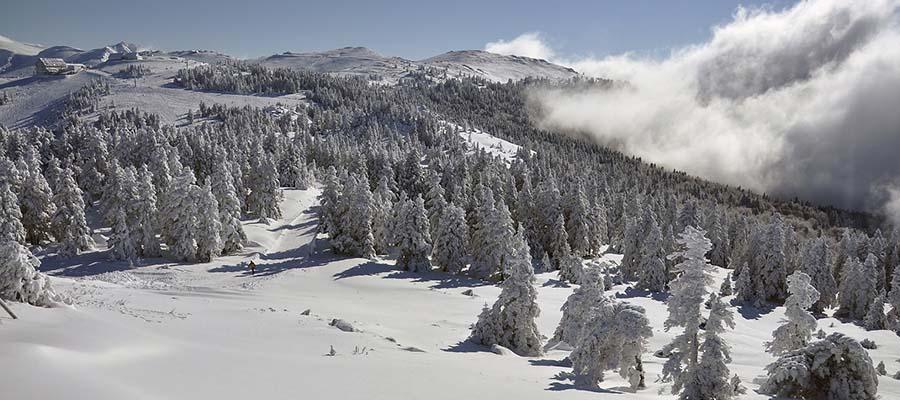Uludağ Kayak Merkezi - Genel