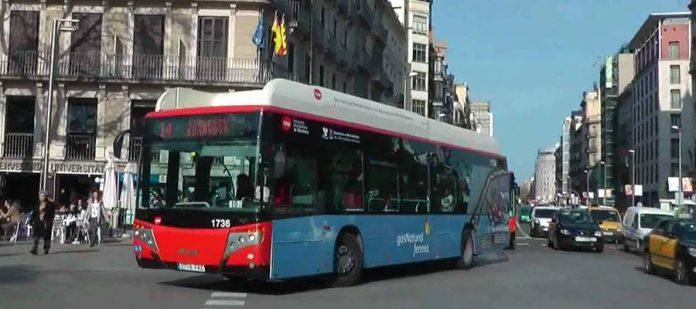 Toplu Ulaşım - Otobüs