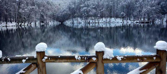 Kış Mevsiminde Yedigöller - Göl