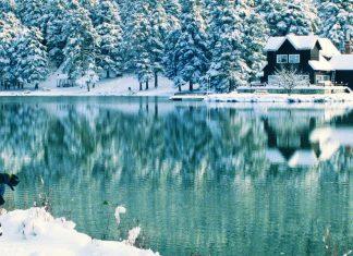 Kış Mevsiminde Yedigöller - Kapak