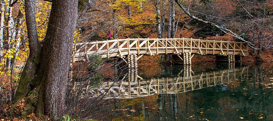 Kış Mevsiminde Yedigöller - Köprü